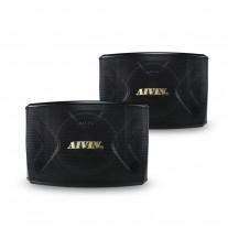 AIVIN KA-10 10寸音箱 卡拉OK專用音箱 (300W)